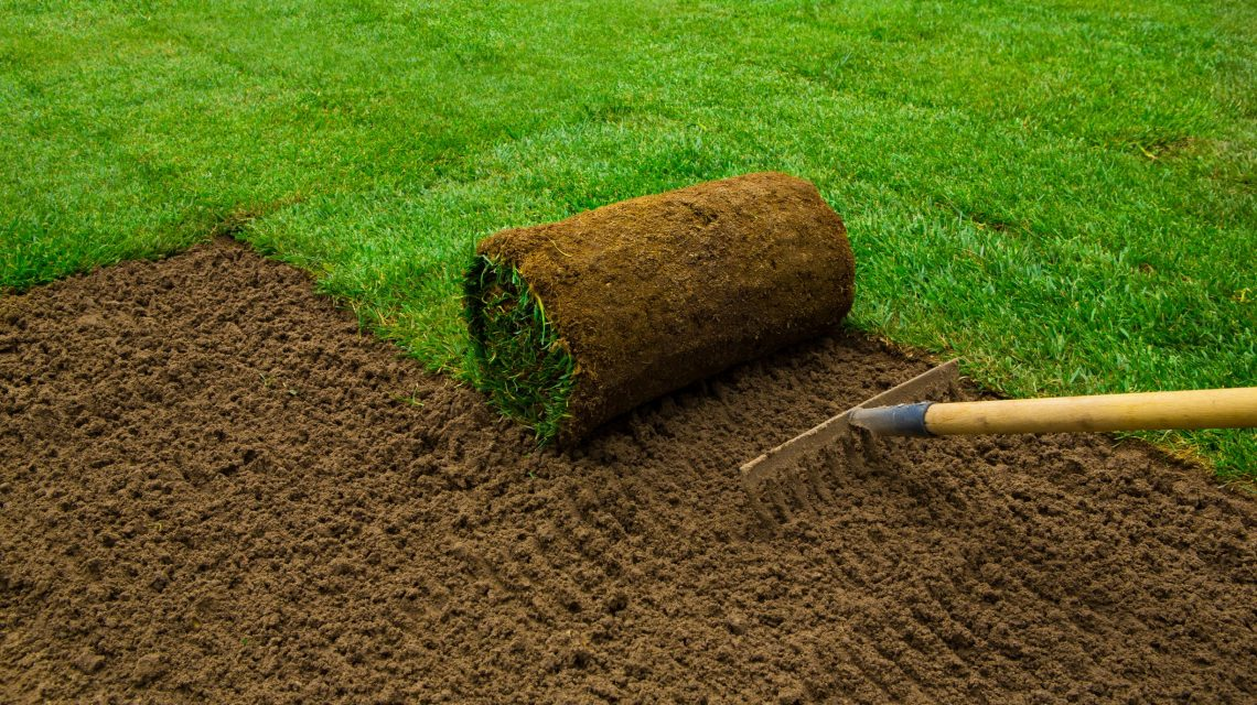 About Sod Installation